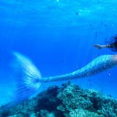 深海美人鱼